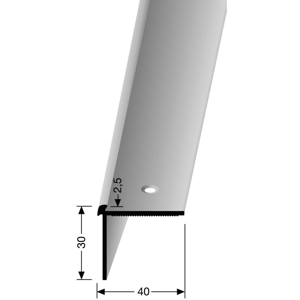 Treppenkantenprofil PF 870 edelstahl 100